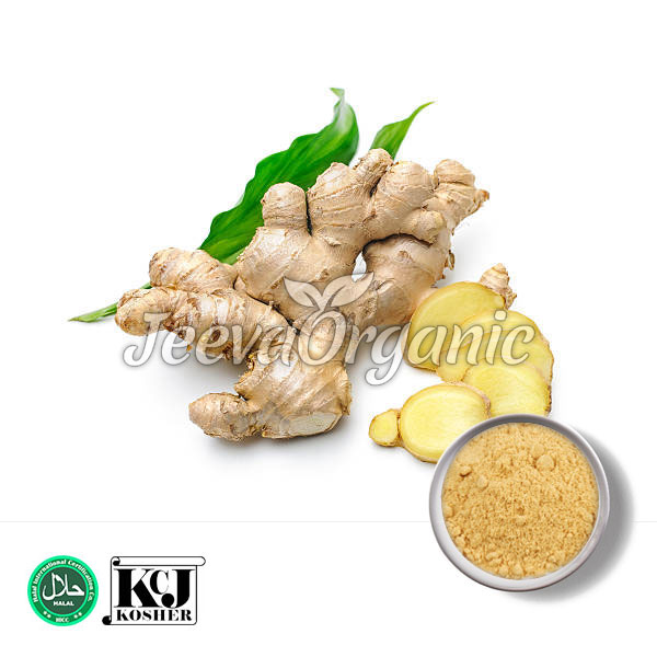 Ginger-Extract