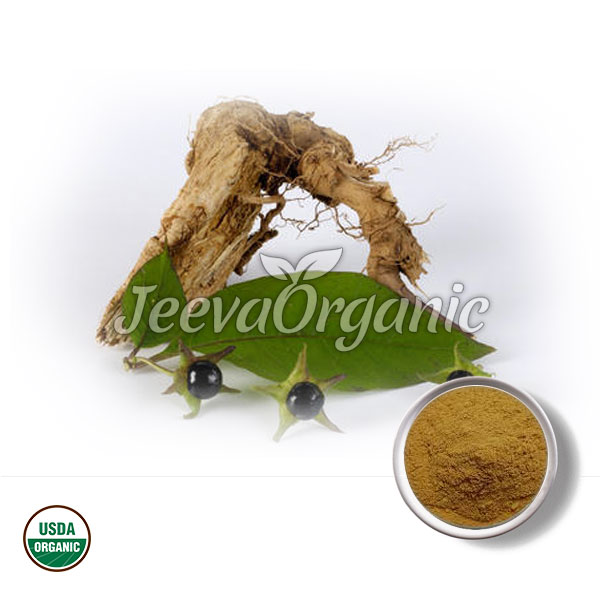 Organic Belladonna Root Powder
