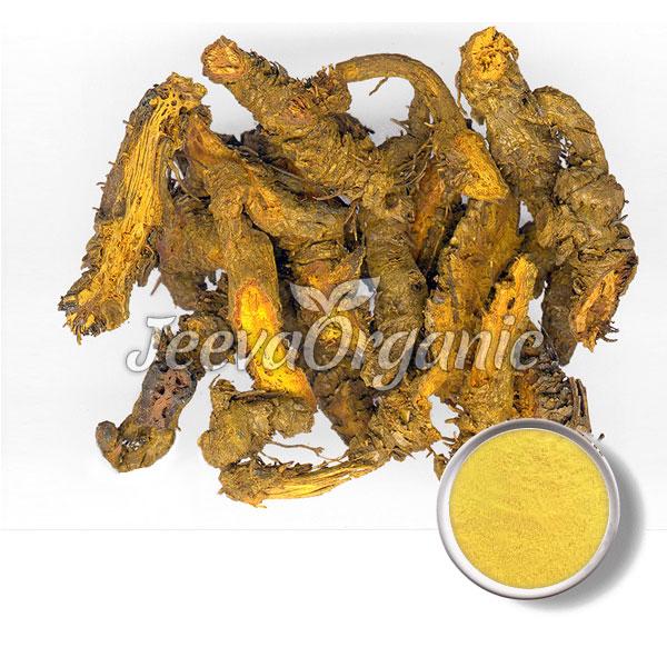 Coptis Rhizome Powder