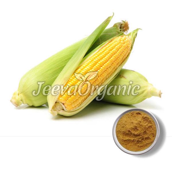 Corn Silk Powder