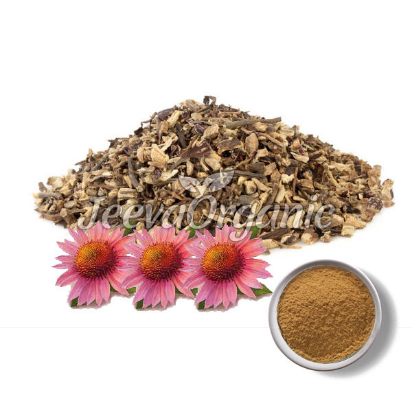 Echinacea-Root-Powder