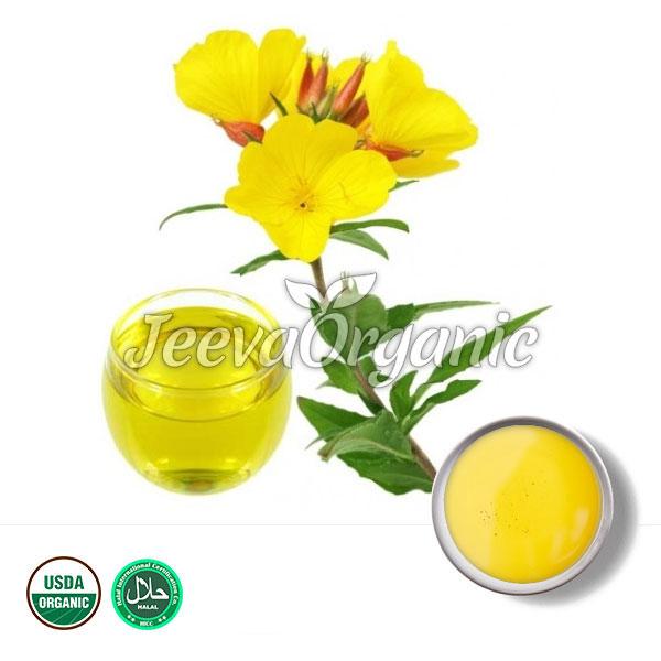 Organic Evening Prime Rose Oil