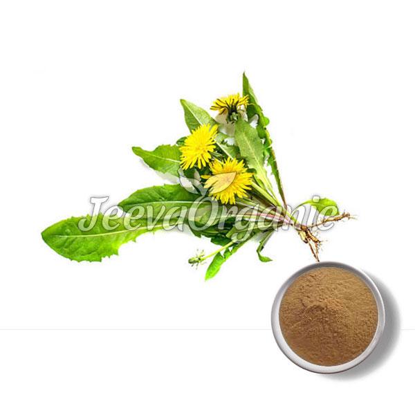 Mongolian Dandelion Powder