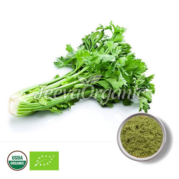 Organic Celery Powder