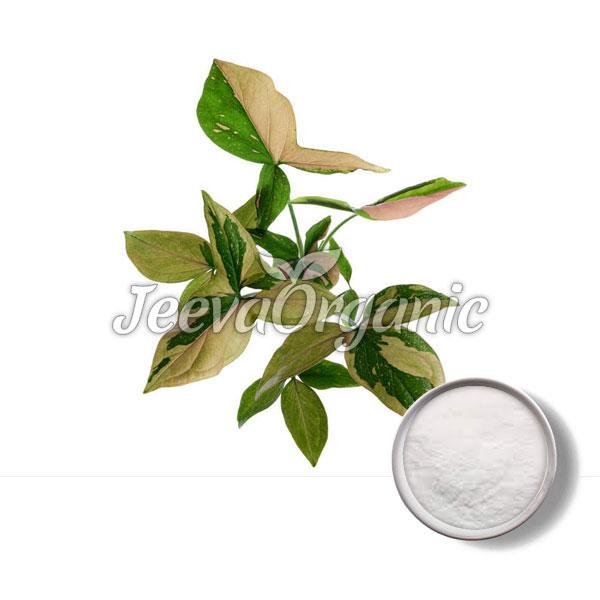 Podophyllum Resin