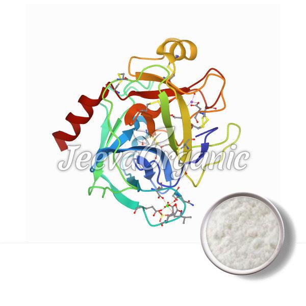 Trypsin Powder(Porcine)