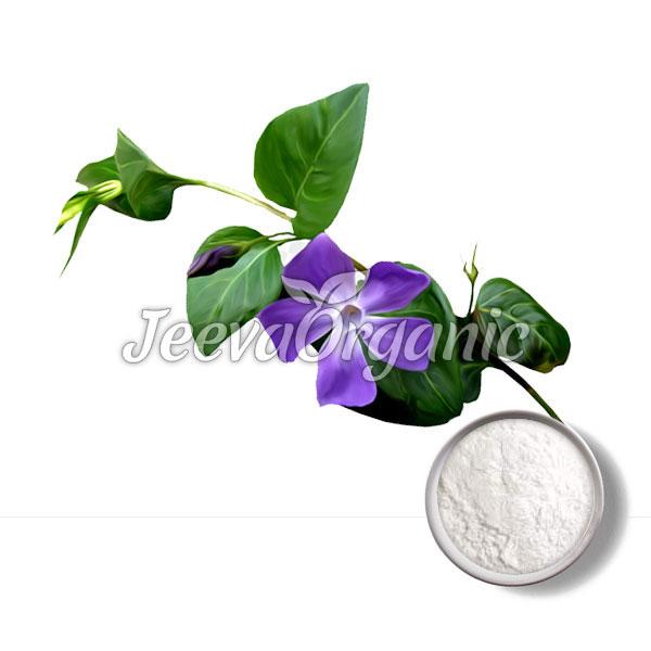 Vinpocetine Powder